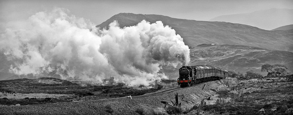 Steam on the Moor