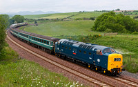 Deltic Borderer II